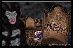 Dracula, St mary's church, wolfman, Whitby