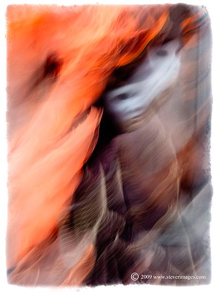 Flames, Venice Carnival, photo