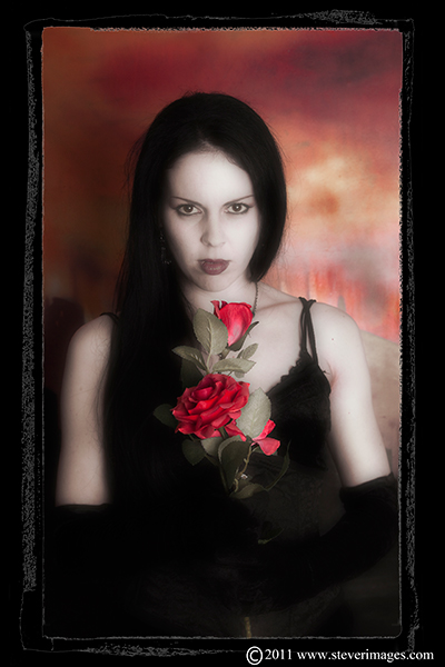 Roses, Dracula's Bride