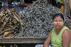 Woman, fish, market, Burma