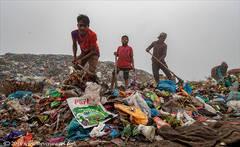Working the rubbish dump