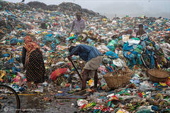 Working the rubbish dump 2
