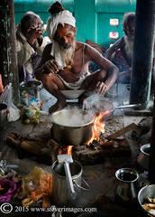 Cooking, Indian men, Sonepur Mela, India