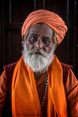 Portrait, Indian man in orange outfit, orange turban