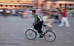 Marrakech Dash