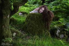 Female model, Dartmoor, woodand