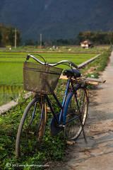 Bicycle, Mai Chau valley, North Vietnam