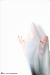 White Room, White Oblivion