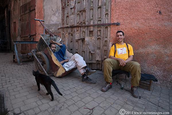 at rest, wheelbarrows, Marrakech, black cat, photo