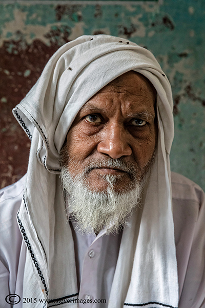 portrait, elderly Indian Man, photo