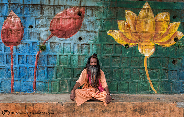 Flower paintings on wall, portrait of Indian man, photo