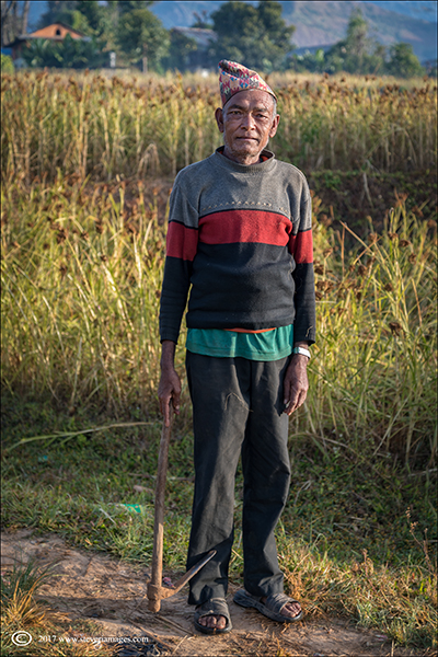Portrait, elderly man in fields in Nepal, photo