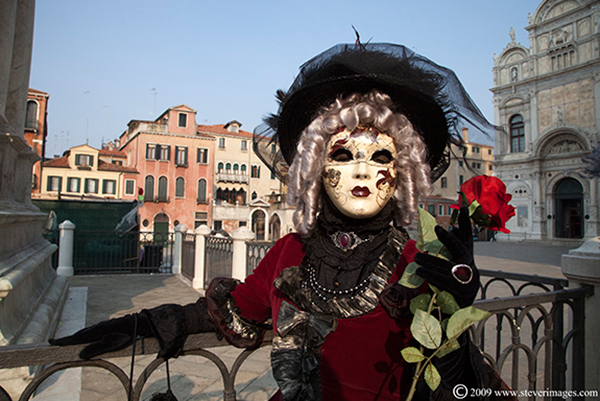 Venice Carnival, Red rose, Venice , photo