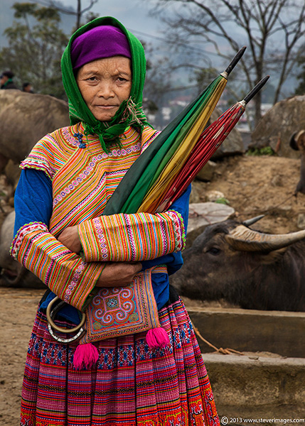 This lady with her umbrellas was taken in the animal section of the Bac Ha market where all the water buffalos were kept...